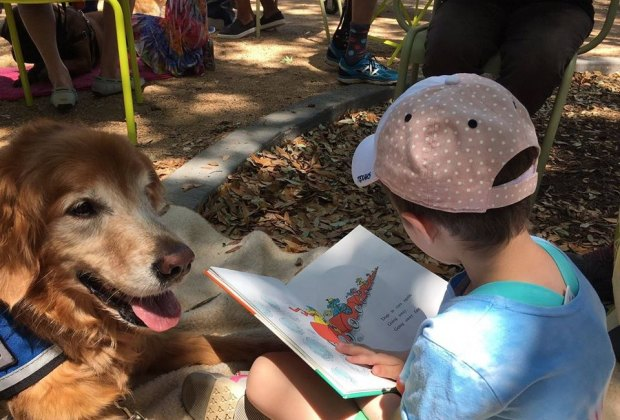 Combine literary fun with your favorite four-legged friends at Pawsitive Pups./Photo courtesy of Levy Park & HPL.