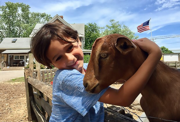 Pet and bottle-feed the goats at Goodale Farms in Riverhead. Photo by Jaime Sumersille