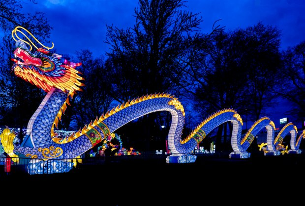 Photo courtesy of Philadelphia Chinese Lantern Festival