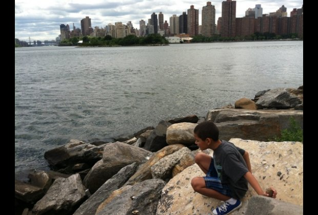 Randall's Island offers great views of East Harlem, the South Bronx and Astoria