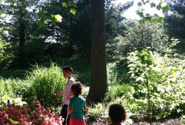 The Everett Children's Adventure Garden