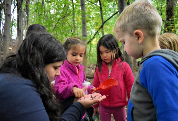 Kids see forest life firsthand at Puddlestompers. Photo courtesy of the program