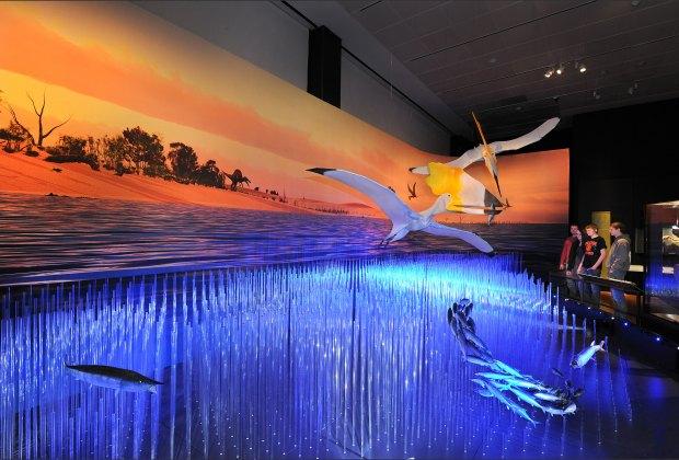 A diorama of the prehistoric Cretaceous Sea; ©AMNH/R. Mickens