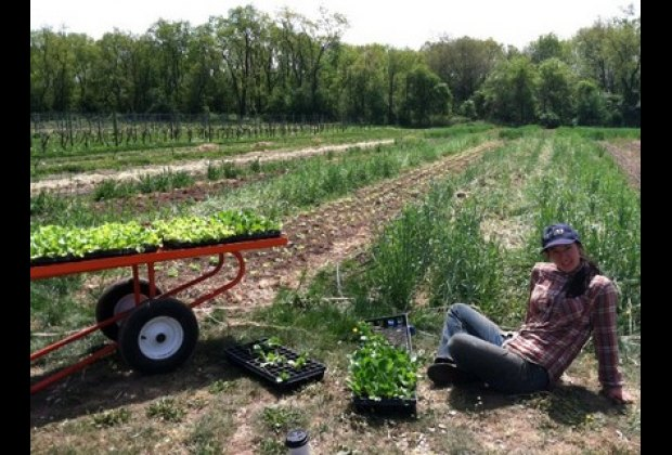 Watching a farmer plant is a great way to teach about the farm-to-table movement