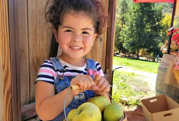 An apple a day keeps this little girl smiling. Photo courtesy Riley's Farm