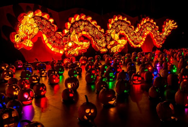 See more than 5,000 hand-carved and illuminated pumpkins at Rise of the Jack O' Lanterns. Photo courtesy of the event