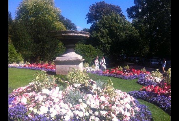 Beautiful gardens at the Royal Victoria Park