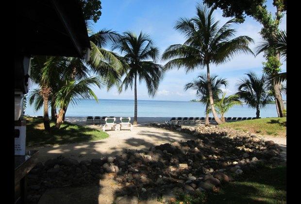 Lush Tropical Vegetation Surrounds the Property
