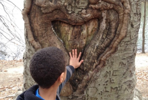 Getting in touch with nature during a geocache search