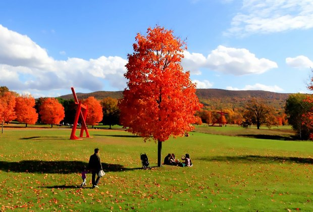 Foliage on Foot: 10 Great Fall Hikes for Westchester Kids