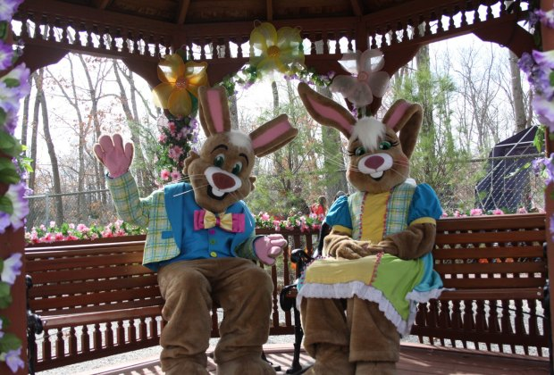 Storybook Land Two Easter Bunnies