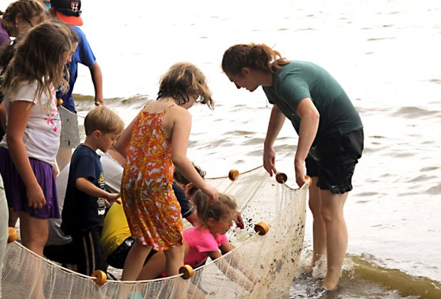 Take part in the Great Hudson Estuary Fish Count on Saturday. Photo courtesy of Teatown