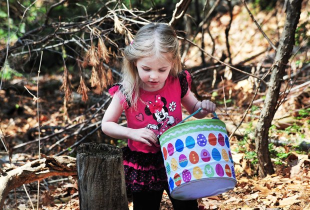 Celebrate the arrival of spring at the Greenburgh Nature Center. Photo courtesy of the Greenburgh Nature Center