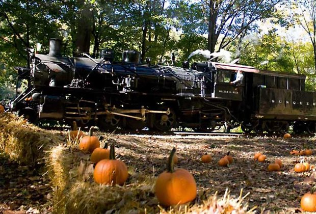 Take the Great Pumpkin Train to pick a pumpkin from the pumpkin patch while enjoying the beautiful scenery. Photo courtesy of Delaware River Railroad Excursions