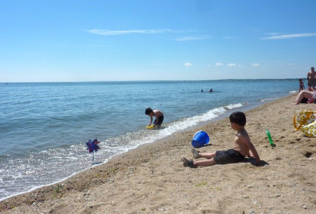 Kids wait for the tide to go out for critter catching at Hammonasset Beach State Park.