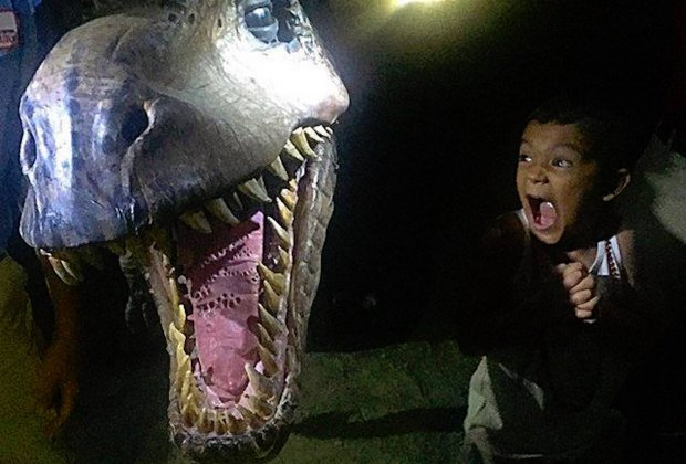 Watch out for the T-Rex at Dinosaurs After Dark on Saturday. Photo courtesy of Field Station: Dinosaurs