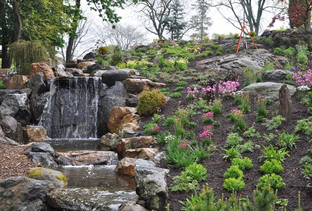 flowers and at waterfall in summer at untermyer gardens
