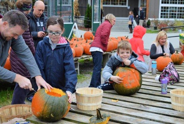 Pumpkinfest in Needham, MA benefits Boston Children's Hospital. Photo courtesy of Volante Farms