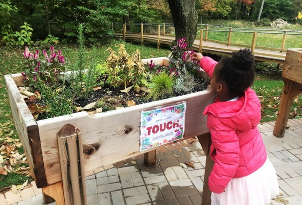 girl at the touch table Watchung Sensory Trail