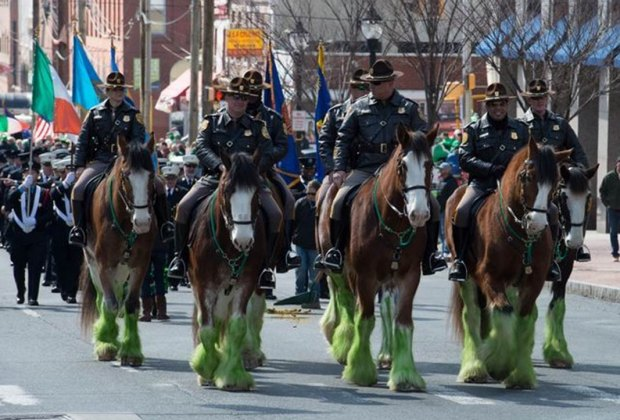 Photo of Wilmington St. Patrick's Day Parade courtesy of Irish Culture Club of Delaware