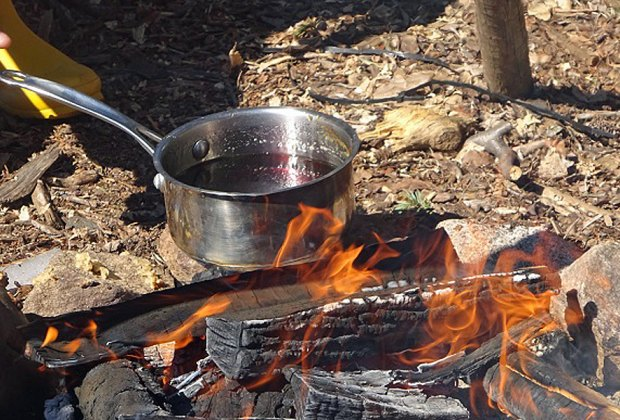 Boil maple sugar with Greenburgh Nature Center this winter