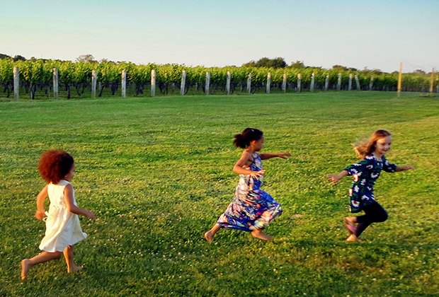 Kids  can frolic in the fields at family-friendly Wölffer Estate Vineyard in Sagaponack.