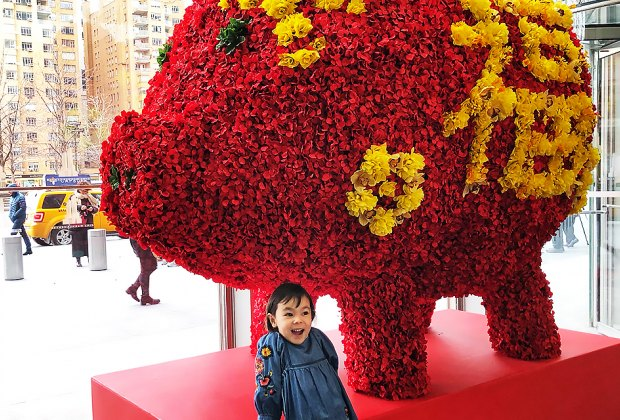 Year of the Pig at the Time Warner Center. Photo by Janet Bloom
