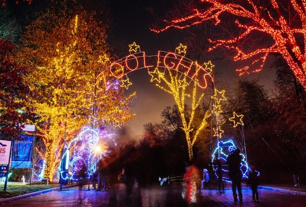 Come for the animals, stay for the holiday lights at ZooLights. Photo courtesy of National Zoo