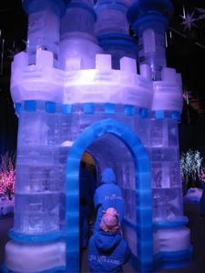 Ice Kingdom at Chill at the Queen Mary